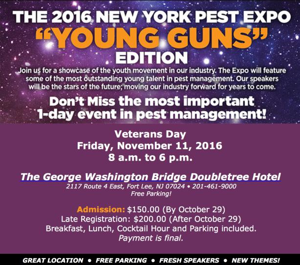 youngguns-header-26
