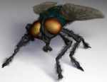 smallfly-management